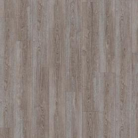 IVC Moduleo Transform Verdon Oak 24962