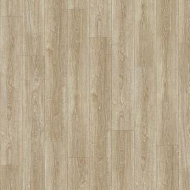IVC Moduleo Transform Verdon Oak 24280